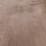 Дуб корицовый